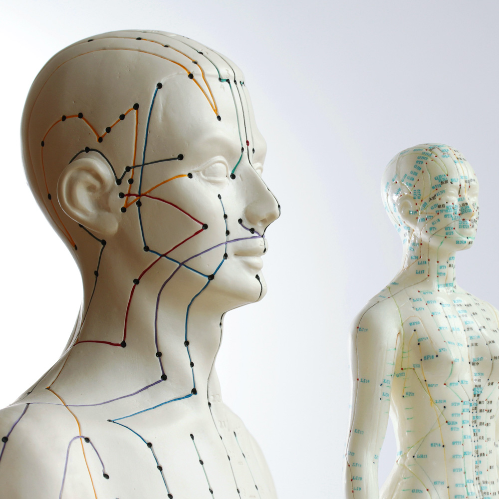 Two mannequins on which acupuncture points are indicated